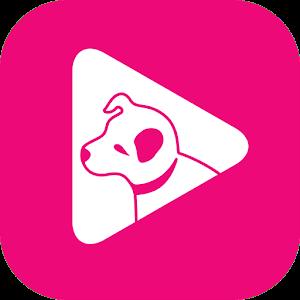 hmv PLAY icon
