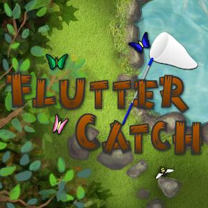 Flutter Catch icon