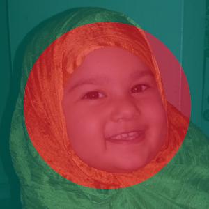 Flag 71 - Profile Flag of Bangladesh icon