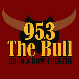 95.3 The Bull icon