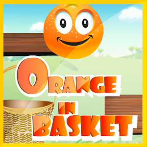 Orange in Basket icon