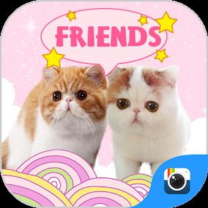 (FREE) Z CAMERA CAT STICKER icon