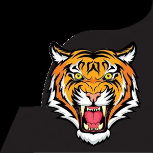 Aadu Puli Game icon