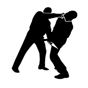 Krav Maga Training icon