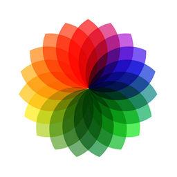 Rollsaver Instasave App For Instagram Apprecs
