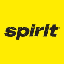 Spirit Airlines Check-in icon